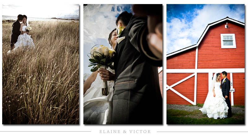 Elaine & Victor's Wedding by BEE'S PHOTOGRAPHY - BEESPHOTO - Vancouver Wedding Photography